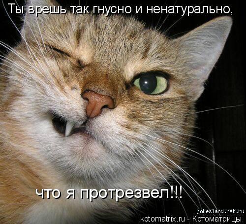 Котоматрица: Ты врешь так гнусно и ненатурально,   что я протрезвел!!!