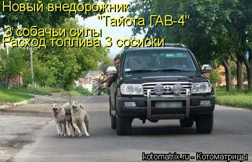 """Котоматрица: Новый внедорожник """"Тайота ГАВ-4"""" 3 собачьи силы Расход топлива 3 сосиски"""