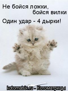 Котоматрица: Не бойся ложки,  бойся вилки  Один удар - 4 дырки!