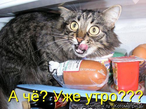 http://kotomatrix.ru/images/lolz/2008/07/21/wJ.jpg
