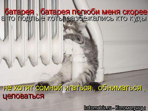 Котоматрица: батарея , батарея полюби меня скорее а то подлые коты разбежались кто куды не хотят сомной игаться , обниматься , целоваться