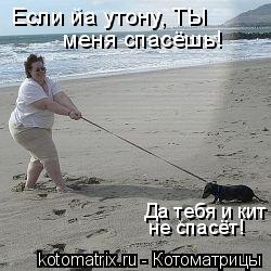 Котоматрица: Если йа утону, ТЫ меня спасёшь! Да тебя и кит  не спасёт!