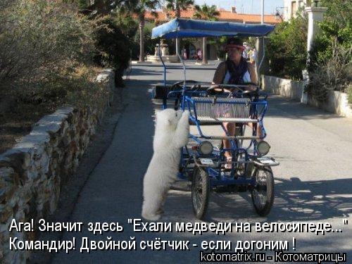"""Котоматрица: Ага! Значит здесь """"Ехали медведи на велосипеде..."""" Командир! Двойной счётчик - если догоним !"""