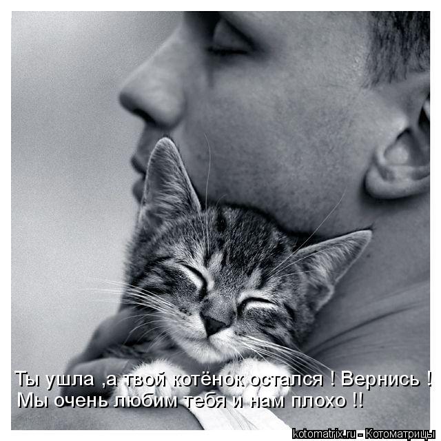 Котоматрица: Ты ушла ,а твой котёнок остался ! Вернись ! Мы очень любим тебя и нам плохо !!