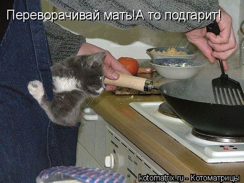 Котоматрица: Переворачивай мать!А то подгарит!
