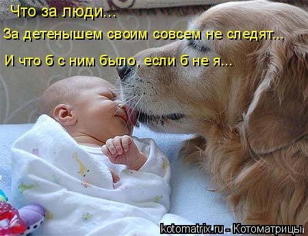 Котоматрица: Что за люди... За детенышем своим совсем не следят... И что б с ним было, если б не я...
