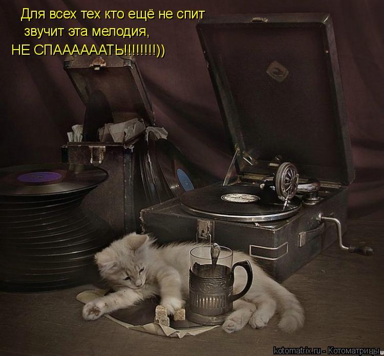 Котоматрица: Для всех тех кто ещё не спит звучит эта мелодия, НЕ СПААААААТЬ!!!!!!!!))