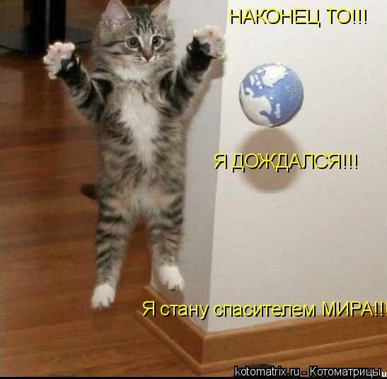 Котоматрица: НАКОНЕЦ ТО!!! Я ДОЖДАЛСЯ!!! Я стану спасителем МИРА!!!