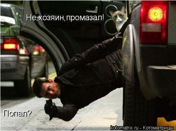Котоматрица: Попал? Не,хозяин,промазал!