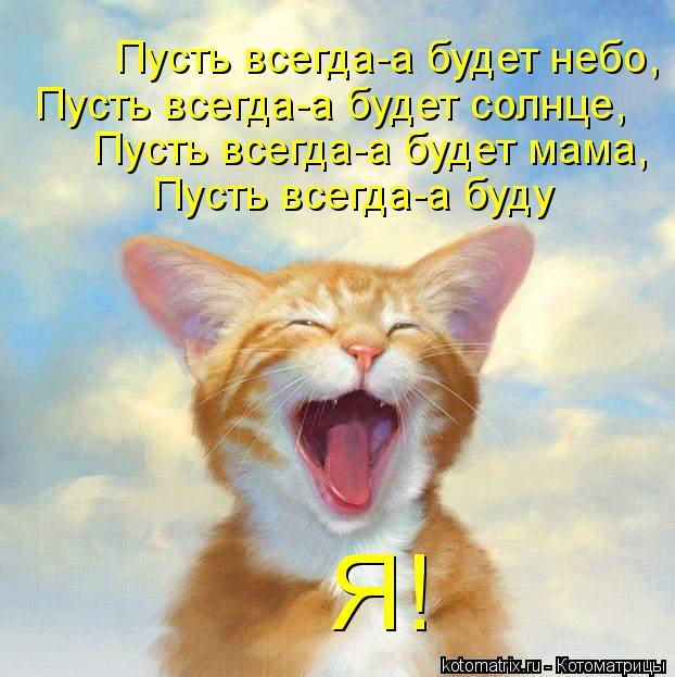 Котоматрица: Пусть всегда-а будет небо, Пусть всегда-а будет солнце, Пусть всегда-а будет мама, Пусть всегда-а буду Я!