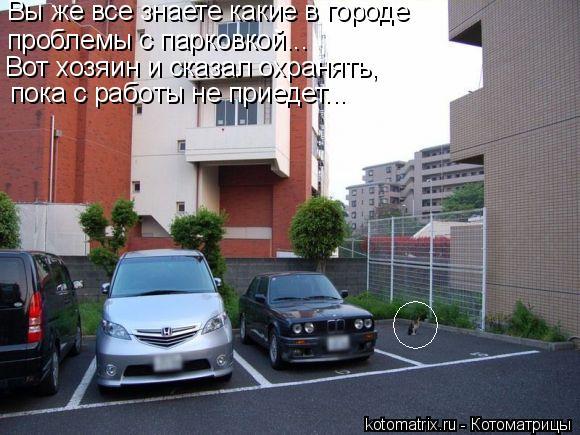 Котоматрица: Вы же все знаете какие в городе  проблемы с парковкой... Вот хозяин и сказал охранять,  пока с работы не приедет...