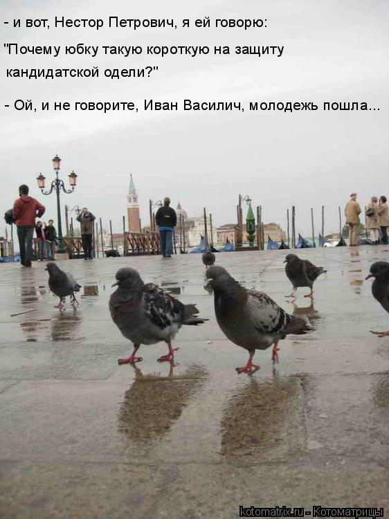 """Котоматрица: - и вот, Нестор Петрович, я ей говорю:  """"Почему юбку такую короткую на защиту  кандидатской одели?"""" - Ой, и не говорите, Иван Василич, молодежь по"""