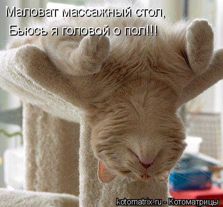 Котоматрица: Маловат массажный стол, Бьюсь я головой о пол!!!