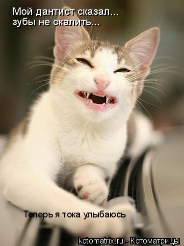 Котоматрица: Мой дантист сказал...  зубы не скалить... Теперь я тока улыбаюсь