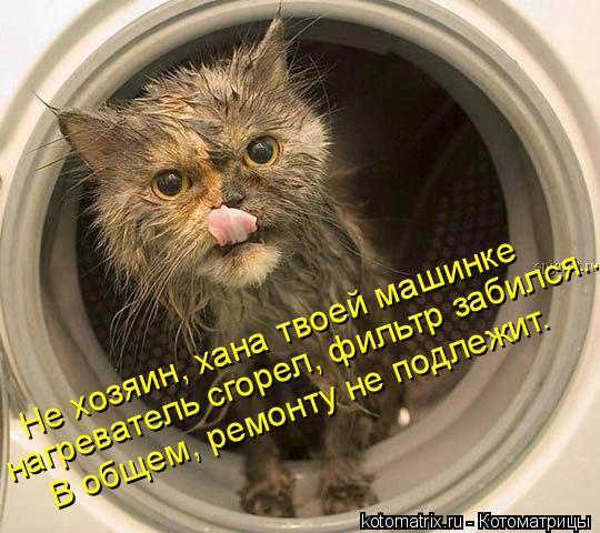 Котоматрица: Не хозяин, хана твоей машинке нагреватель сгорел, фильтр забился... В общем, ремонту не подлежит.