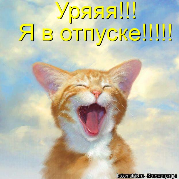 Котоматрица: Я в отпуске!!!!! Уряяя!!!