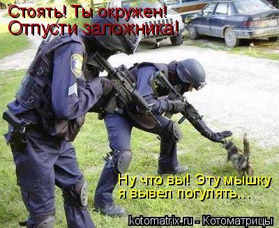 Котоматрица: Ну что вы! Эту мышку я вывел погулять... Стоять! Ты окружен!  Отпусти заложника!
