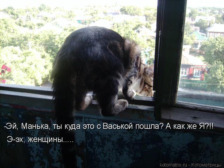 Котоматрица: -Эй, Манька, ты куда это с Васькой пошла? А как же Я?!! Э-эх, женщины.....