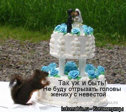 Котоматрица: Не буду отгрызать головы  жениху с невестой Так уж и быть!