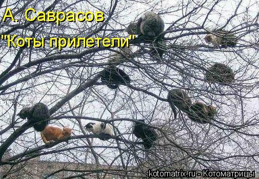 """Котоматрица: А. Саврасов  """"Коты прилетели"""""""