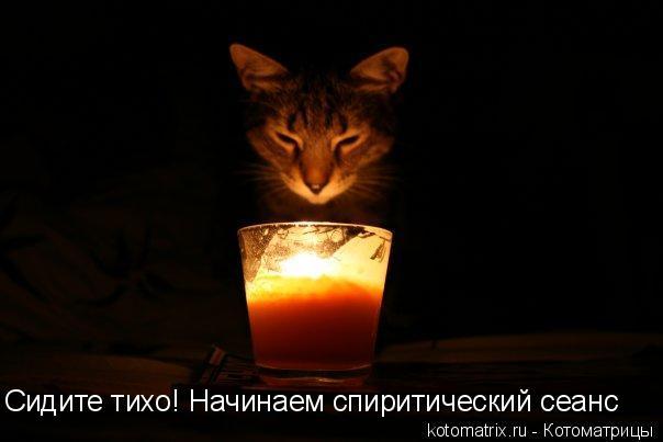 Котоматрица: Сидите тихо! Начинаем спиритический сеанс