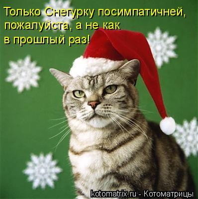 Котоматрица: Только Снегурку посимпатичней, пожалуйста, а не как  в прошлый раз!