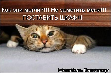 Котоматрица: Как они могли?!!! Не заметить меня!!! ПОСТАВИТЬ ШКАФ!!!