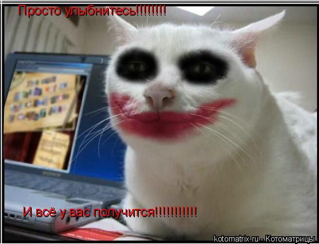 Котоматрица: Просто улыбнитесь!!!!!!!! И всё у вас получится!!!!!!!!!!!