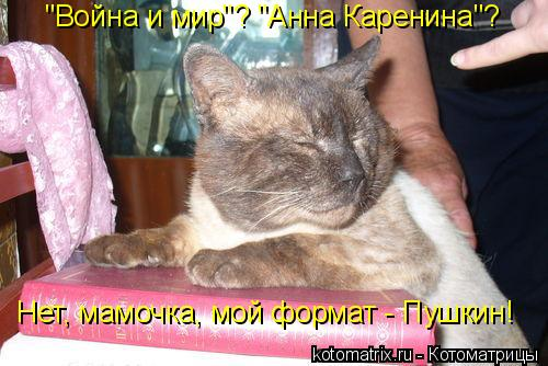 "Котоматрица: ""Война и мир""? ""Анна Каренина""? Нет, мамочка, мой формат - Пушкин!"