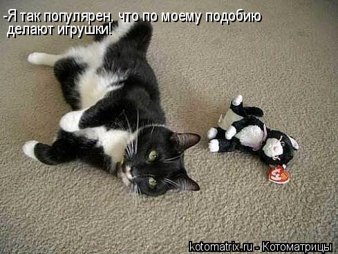 Котоматрица: -Я так популярен, что по моему подобию делают игрушки!