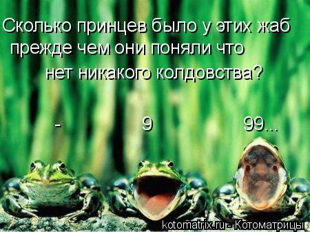 Котоматрица: Сколько принцев было у этих жаб прежде чем они поняли что  нет никакого колдовства?      -                9                  99...