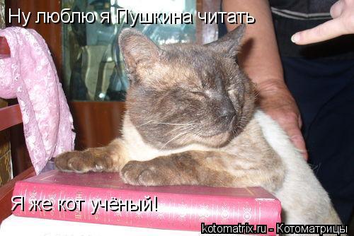 Котоматрица: Ну люблю я Пушкина читать Я же кот учёный!