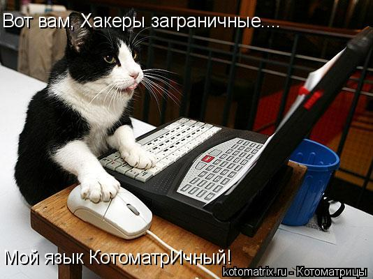 Котоматрица: Вот вам, Хакеры заграничные.... Мой язык КотоматрИчный!