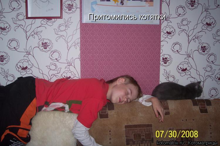 Котоматрица: Притомились котятки