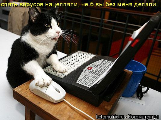 Котоматрица: опять вирусов нацепляли, че б вы без меня делали...