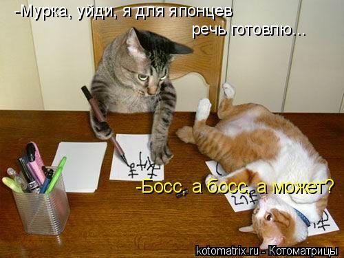 Котоматрица: -Босс, а босс, а может? -Мурка, уйди, я для японцев  речь готовлю...