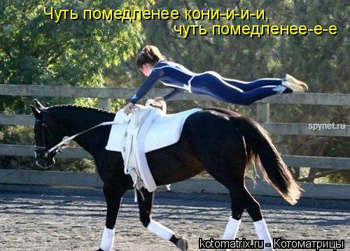Котоматрица: Чуть помедленее кони-и-и-и,  чуть помедленее-е-е