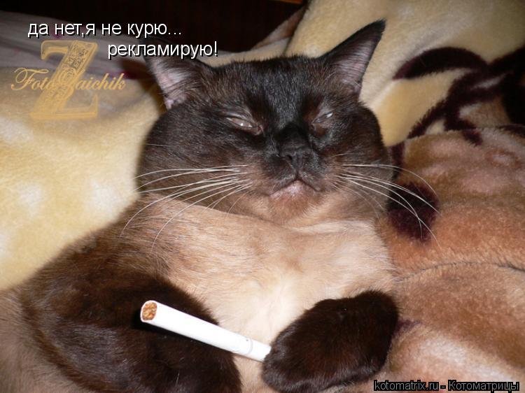 Котоматрица: да нет,я не курю... рекламирую!