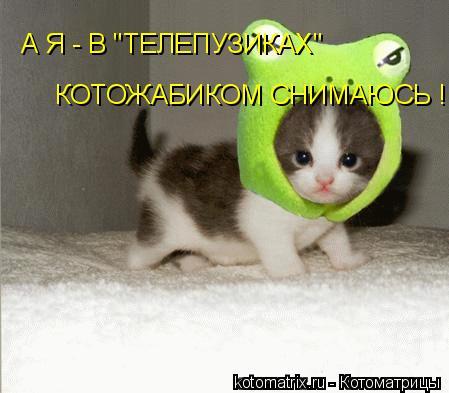 """Котоматрица: А Я - В """"ТЕЛЕПУЗИКАХ""""  КОТОЖАБИКОМ СНИМАЮСЬ !!!"""