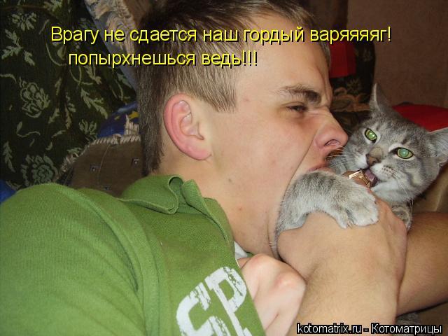 Котоматрица: Врагу не сдается наш гордый варяяяяг!  попырхнешься ведь!!!