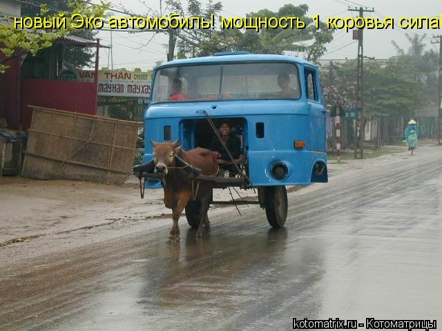 Котоматрица: новый Эко автомобиль! мощность 1 коровья сила!