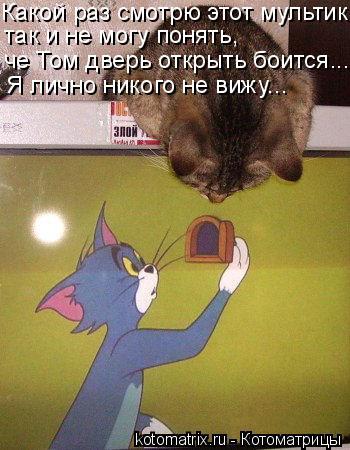 Котоматрица: Какой раз смотрю этот мультик так и не могу понять, че Том дверь открыть боится... Я лично никого не вижу...