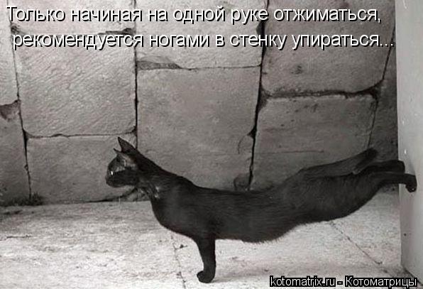 Котоматрица: Только начиная на одной руке отжиматься, рекомендуется ногами в стенку упираться...