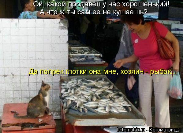 Котоматрица: Ой, какой продавец у нас хорошенький! А что ж ты сам ее не кушаешь? Да попрек глотки она мне, хозяин - рыбак...