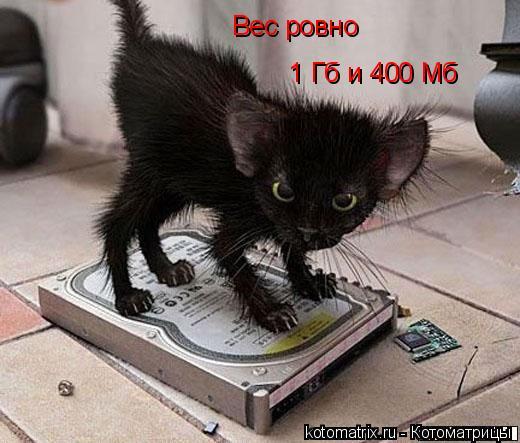 Котоматрица: Вес ровно 1 Гб и 400 Мб
