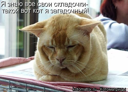 Котоматрица: Я знаю все свои складочки- такой вот кот я загадочный!