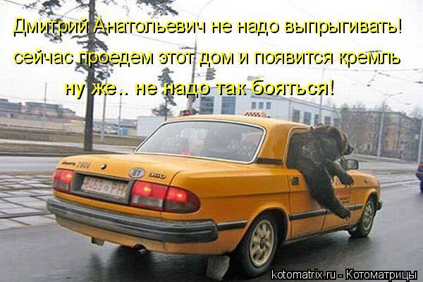 Котоматрица: Дмитрий Анатольевич не надо выпрыгивать! сейчас проедем этот дом и появится кремль ну же.. не надо так бояться!