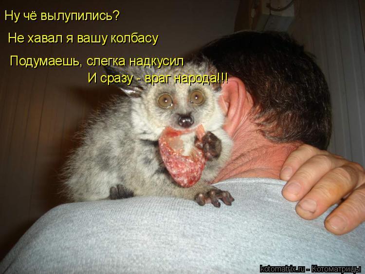 Котоматрица: Ну чё вылупились?  Не хавал я вашу колбасу Подумаешь, слегка надкусил И сразу - враг народа!!!