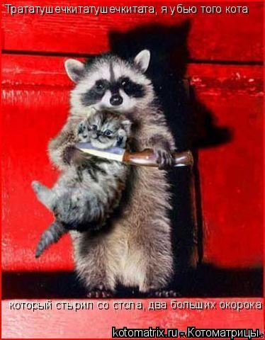 Котоматрица: Трататушечкитатушечкитата, я убью того кота который стырил со стола, два больших окорока