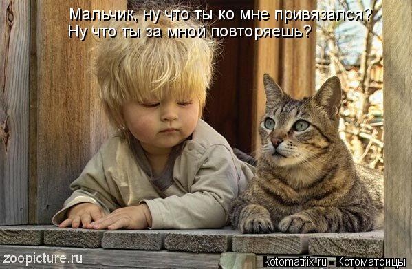 Котоматрица: Мальчик, ну что ты ко мне привязался? Ну что ты за мной повторяешь?